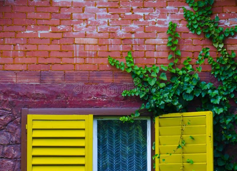 五颜六色的详细资料房子 图库摄影