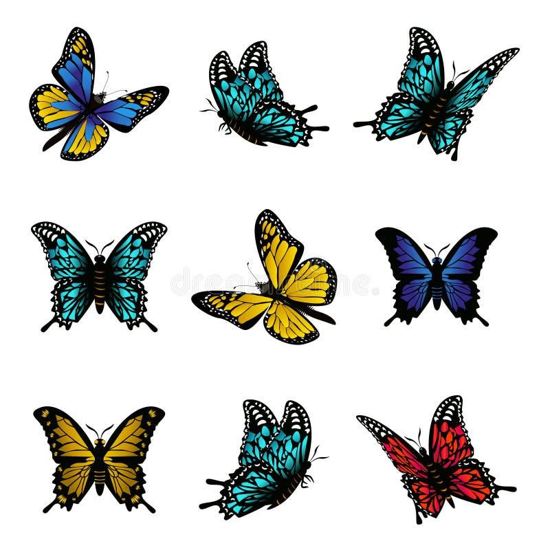 五颜六色的象集合传染媒介例证蝴蝶  向量例证