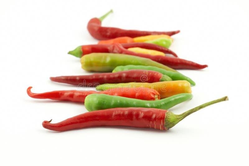 五颜六色的辣椒行 免版税库存图片