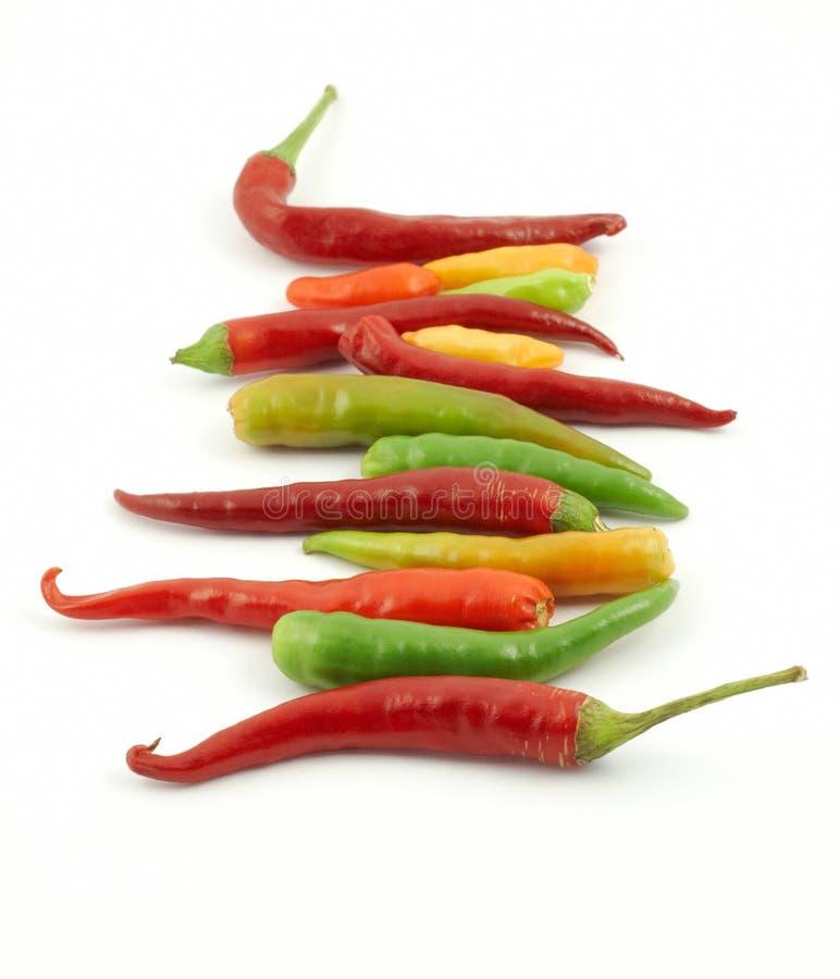 五颜六色的辣椒行 库存照片
