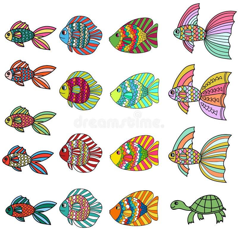 五颜六色的逗人喜爱的动画片乱画鱼集合 手拉的稀薄的线在白色隔绝的热带水族馆鱼和乌龟象收藏 皇族释放例证
