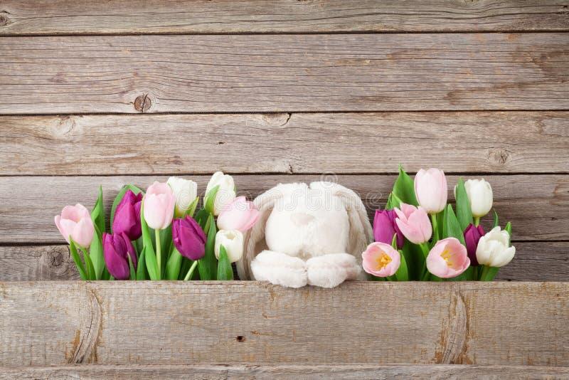 五颜六色的郁金香和兔子 看板卡复活节 免版税库存照片