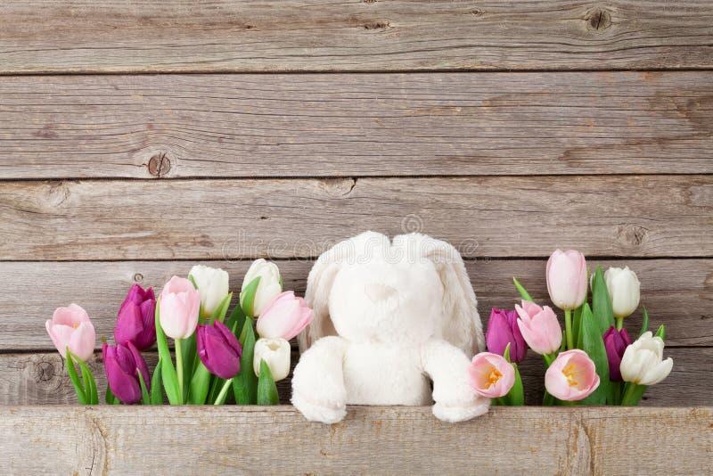 五颜六色的郁金香和兔子 看板卡复活节 库存图片
