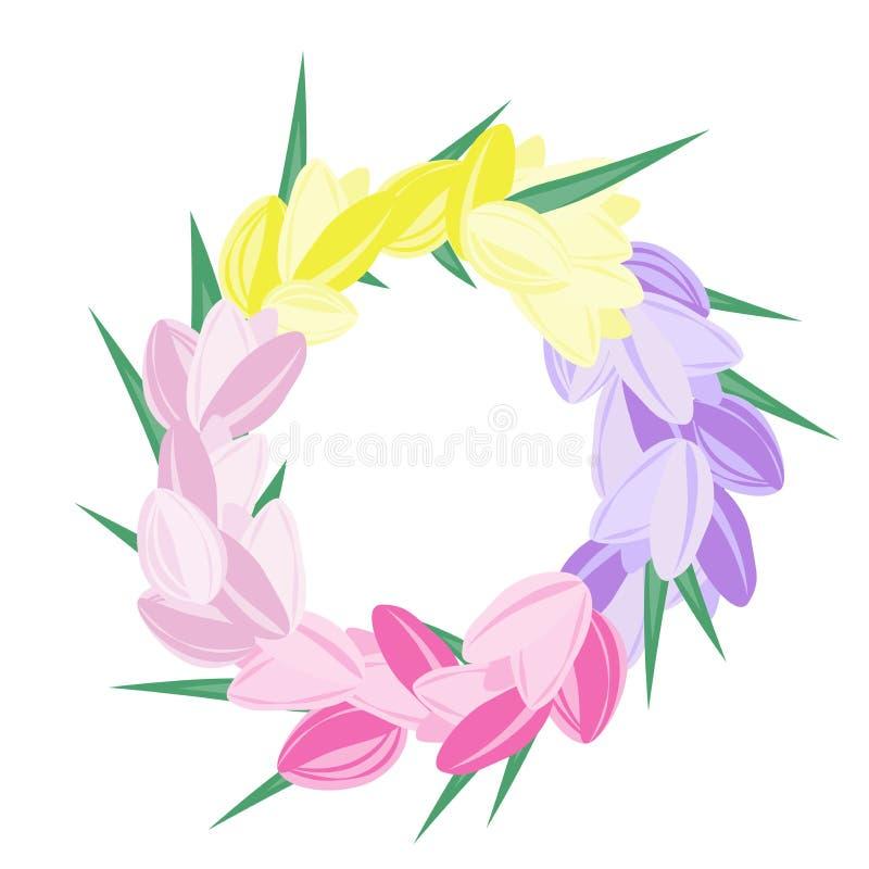 五颜六色的郁金香花圈:紫罗兰色,桃红色和黄色传染媒介郁金香本 库存例证