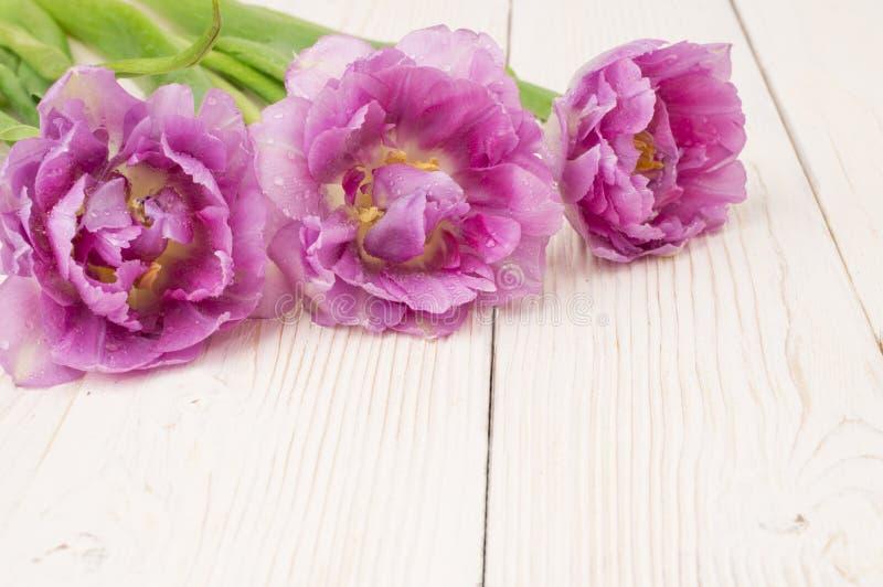 五颜六色的郁金香花束在土气木板,复活节装饰的 库存图片