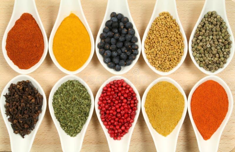 五颜六色的香料 免版税库存图片