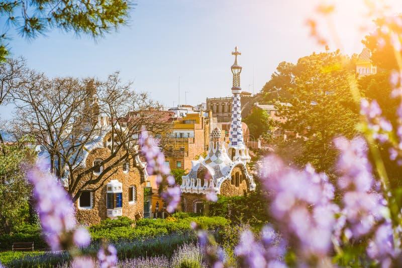 五颜六色的马赛克大厦在公园Guell 在前景的紫罗兰色花 温暖的太阳光飘动,巴塞罗那,西班牙 免版税图库摄影