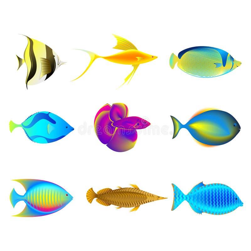 五颜六色的鱼 皇族释放例证