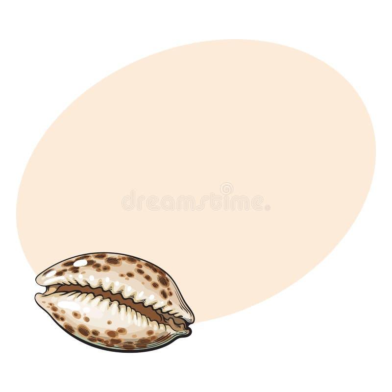 五颜六色的贝壳或cowry海壳,剪影样式传染媒介例证 向量例证