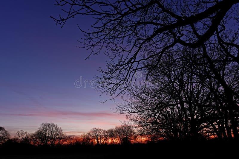 五颜六色的黎明天空 库存照片