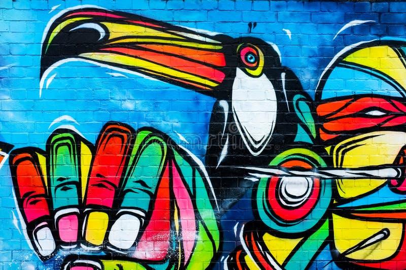 五颜六色的Toucan鸟,都市艺术绘画 免版税库存照片