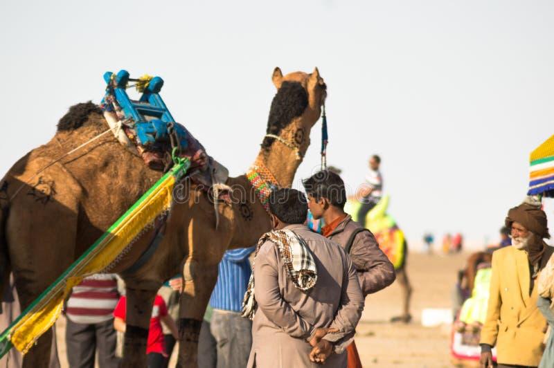 五颜六色装饰的骆驼和这是站立一起等待的游人的所有者采取乘驾 库存照片