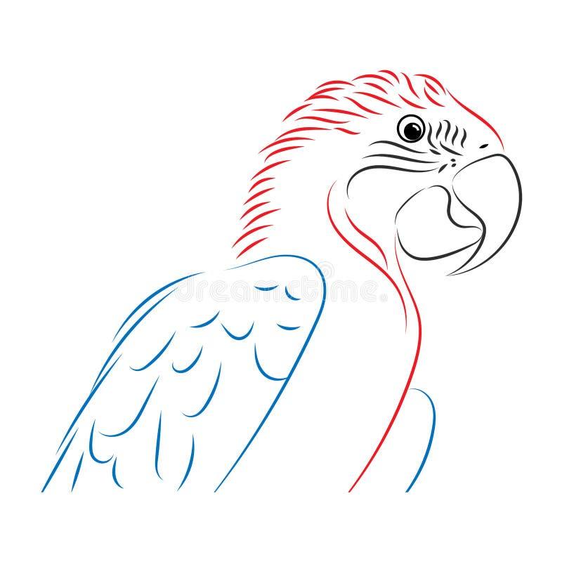五颜六色鹦鹉 向量例证