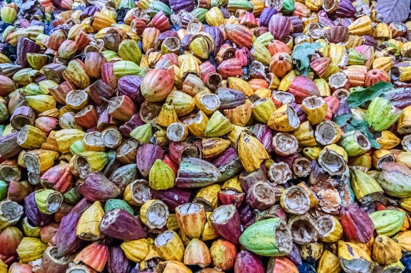 五颜六色,空的恶荚,危地马拉 库存图片