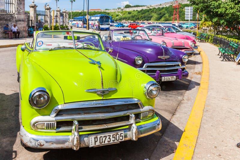 五颜六色,老,经典美国汽车在哈瓦那旧城 免版税库存图片