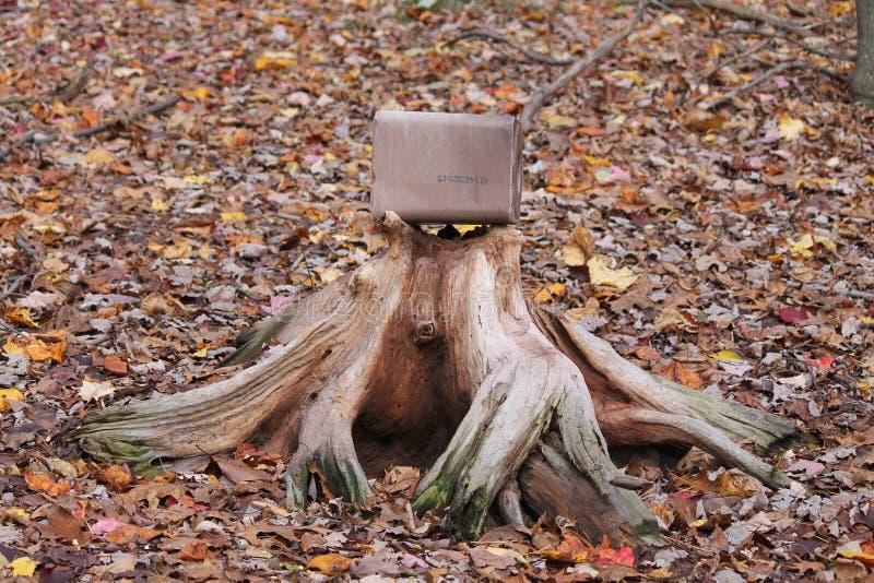 井使用的树桩 免版税库存图片