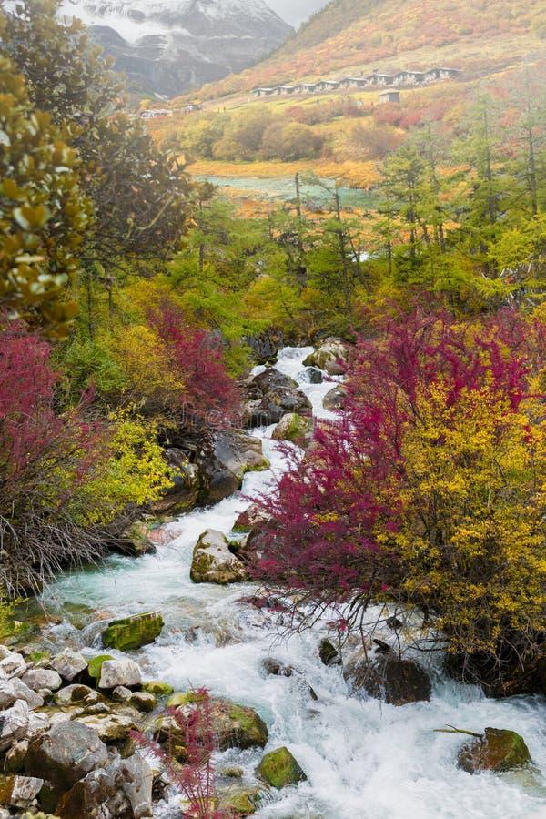 亚丁自然保护 图库摄影