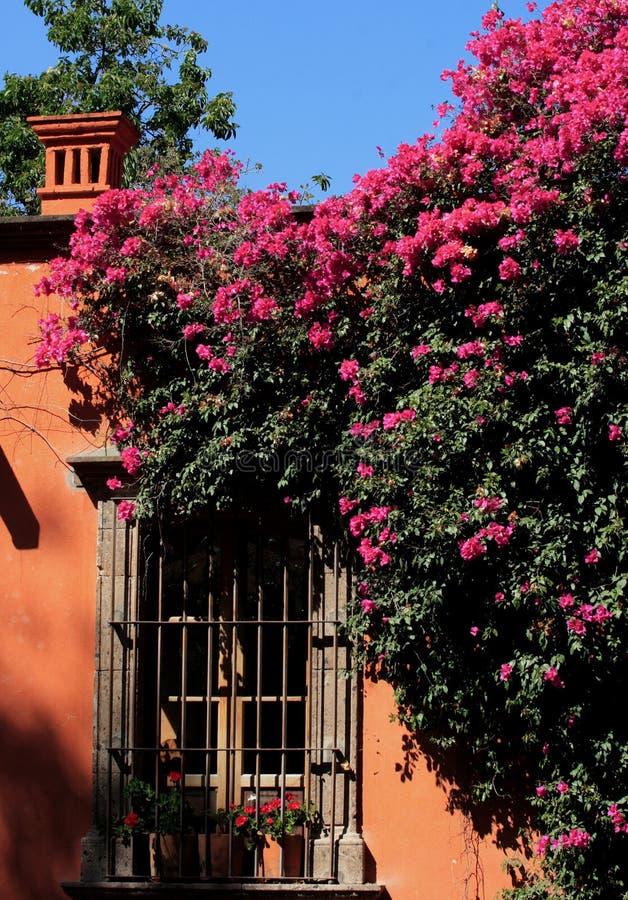 亚伦得・ de guanajuato墨西哥米格尔・圣街道 库存照片