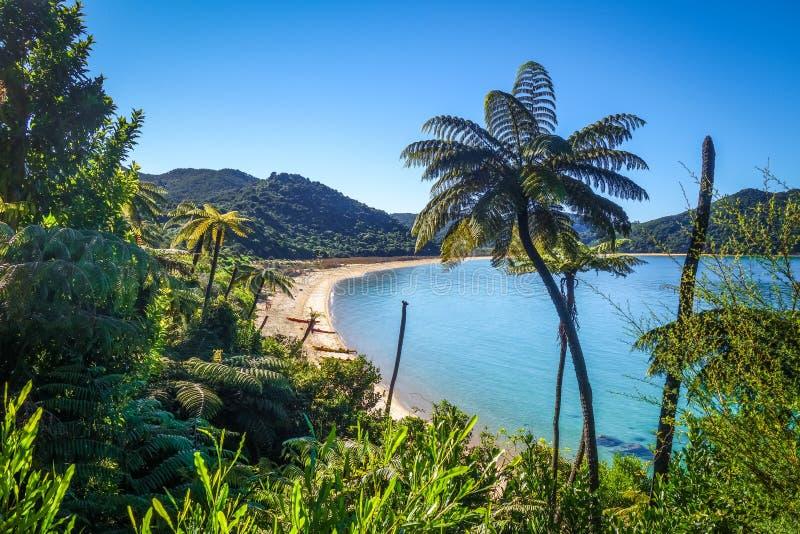 亚伯国家新的公园tasman西兰 库存照片