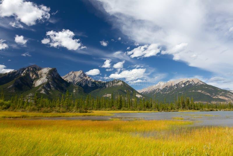 亚伯大加拿大碧玉国家公园 免版税库存照片