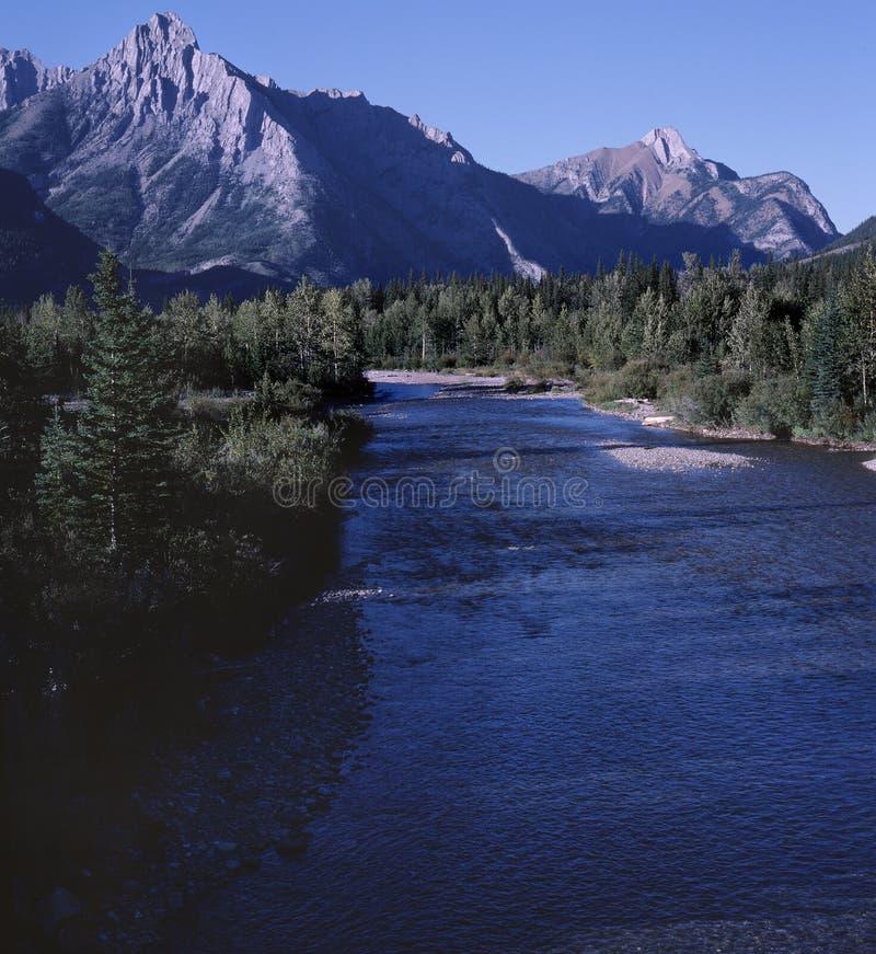 亚伯大岩石山的河 免版税库存照片