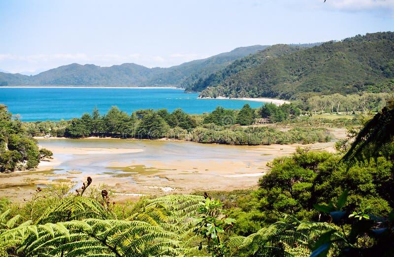亚伯新的tasman西兰 免版税库存图片