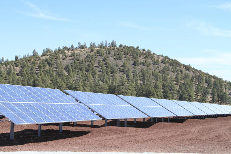 亚利桑那太阳工厂的次幂 库存照片