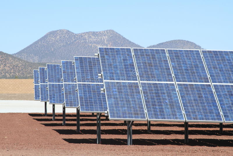 亚利桑那太阳工厂的次幂 免版税库存照片