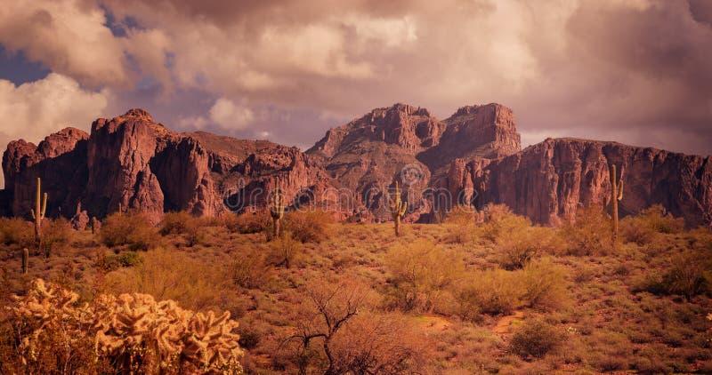 亚利桑那沙漠狂放的西部风景 免版税库存照片