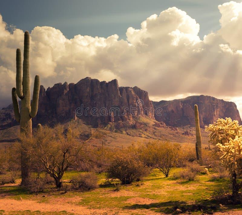 亚利桑那沙漠狂放的西部风景 库存照片
