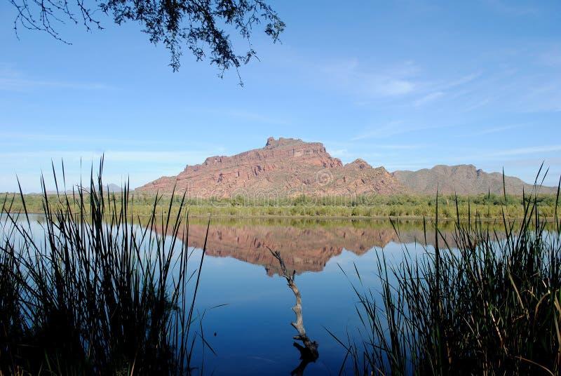 亚利桑那河盐 免版税图库摄影