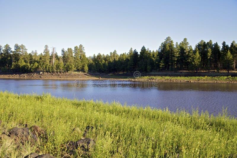 亚利桑那湖山 库存照片
