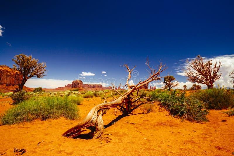 亚利桑那纪念碑那瓦伙族人公园部族美国谷 库存照片