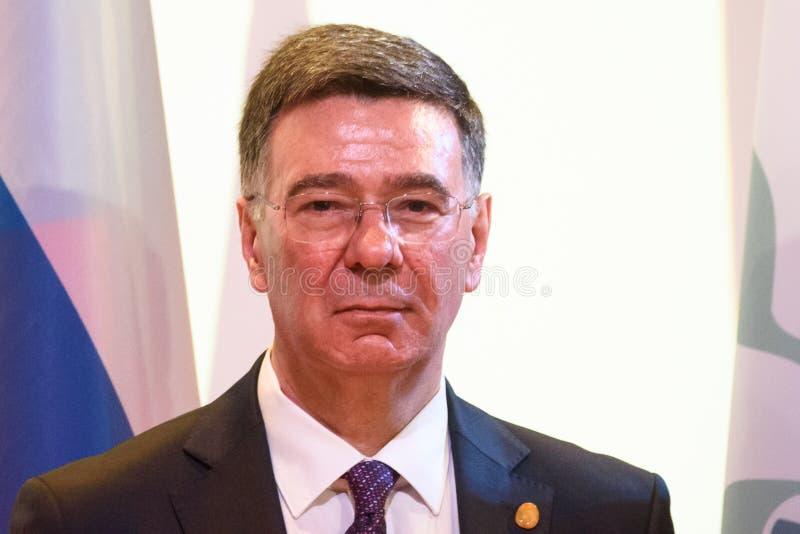 亚历山大潘金,外交部长代理俄罗斯的 库存照片