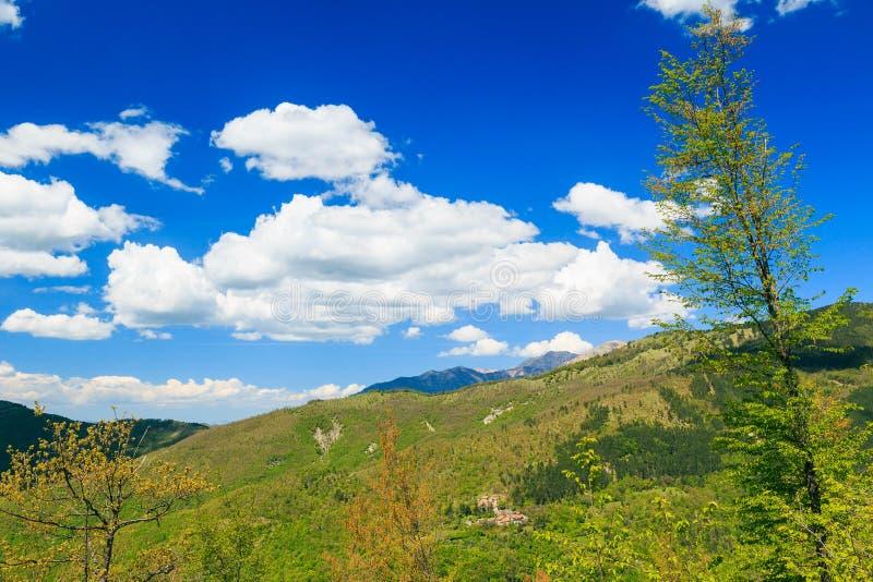 亚平宁山脉意大利植被 免版税库存照片