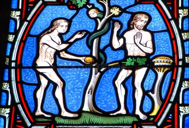 亚当和伊芙污迹玻璃窗的 库存图片