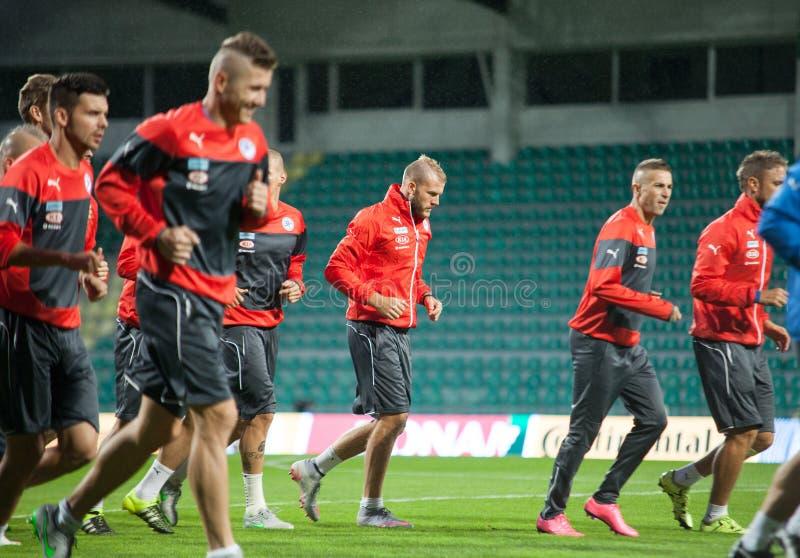 亚当nemec和斯洛伐克全国足球队员球员 免版税库存图片