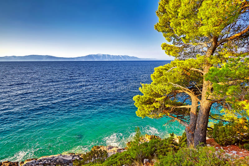 亚得里亚海的意想不到的看法在阳光和蓝天下的 库存照片