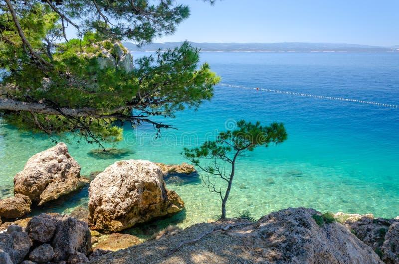 亚得里亚海透明的水在马卡尔斯卡的里维埃拉,达尔马提亚,克罗地亚Brela 图库摄影