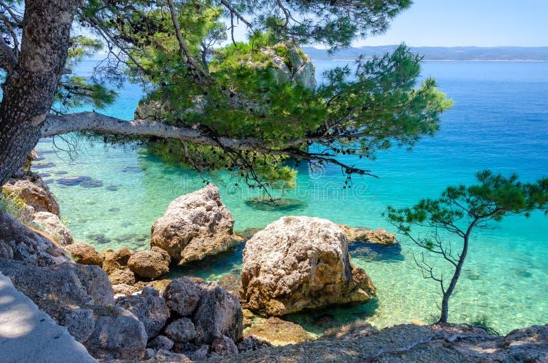 亚得里亚海透明的水在Brela,马卡尔斯卡里维埃拉,达尔马提亚,克罗地亚 库存图片