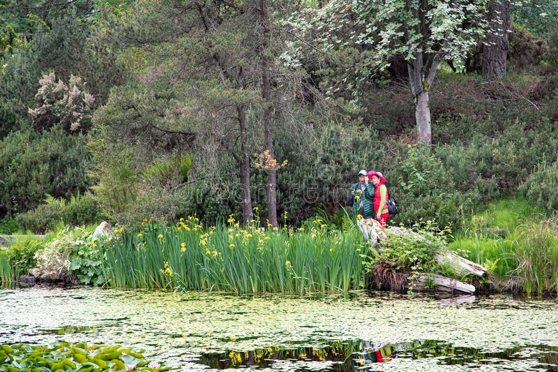 亚洲夫妇在庭院里 免版税库存照片