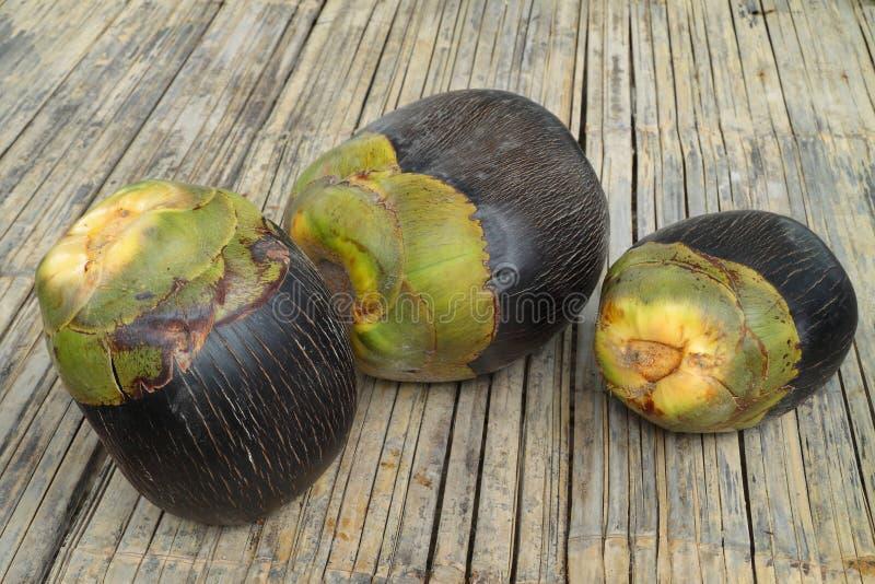 亚洲扇叶树头榈掌上型计算机,棕榈汁,桄榔, Cambod 库存图片