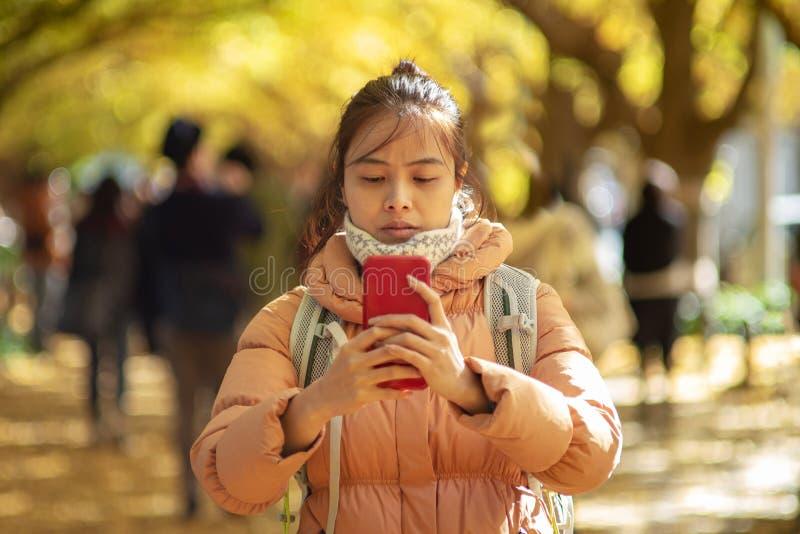 亚洲旅客和秋天颜色在日本 免版税库存照片