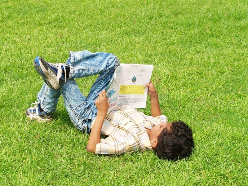 亚洲男孩草坪读取 免版税库存图片