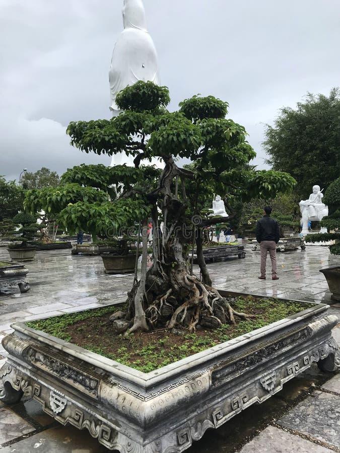 亚洲的古老雕象和雕塑 图库摄影