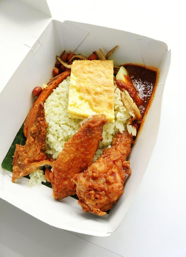 亚洲盘种族米饭菜外卖点 免版税库存照片