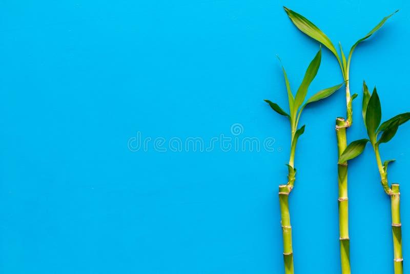 亚洲背景 汉语,日本背景 在蓝色背景顶视图空间的竹分支文本的 库存照片