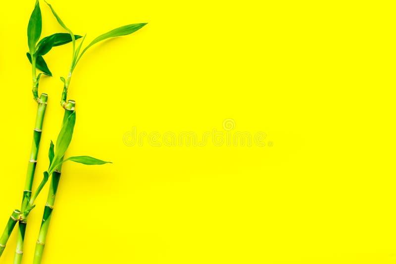 亚洲背景 汉语,日本背景 在黄色背景顶视图拷贝空间的竹分支 免版税库存图片