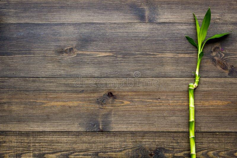 亚洲背景 汉语,日本背景 在黑暗的木背景顶视图拷贝空间的竹分支 免版税库存照片