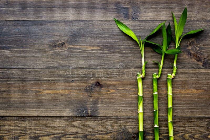 亚洲背景 汉语,日本背景 在黑暗的木背景顶视图拷贝空间的竹分支 免版税库存图片